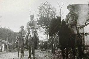 Bộ Tổng Tham mưu chỉ đạo xây dựng và phát triển bộ đội chủ lực cho toàn quốc kháng chiến