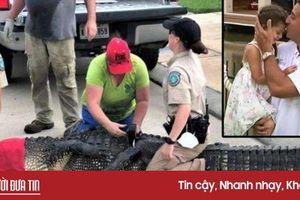 Clip: Ông bố dũng cảm tấn công cá sấu khổng lồ để cứu con gái 4 tuổi