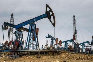 Giá xăng, dầu (8/8): Đà giảm chưa dứt