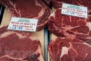 Thị trường Nhật Bản - cơ hội mới cho ngành xuất khẩu thịt bò Pháp