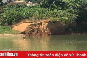 Đê hữu sông Chu (huyện Thiệu Hóa) đang bị sạt lở nghiêm trọng