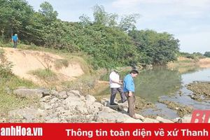 Đoạn đê hữu sông Chu qua xã Minh Tâm đang bị sạt lở nghiêm trọng