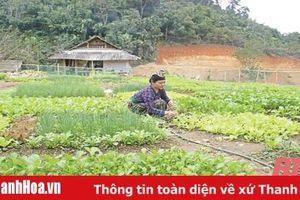 Phụ nữ huyện Quan Sơn tích cực tham gia các phong trào thi đua yêu nước
