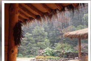 Tự sự ngày mưa