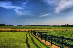 Đất nông nghiệp hết thời hạn có được tiếp tục sử dụng?