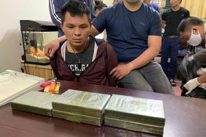 Buôn trâu thua lỗ liều lĩnh 'chuyển nghề' buôn ma túy liên tỉnh