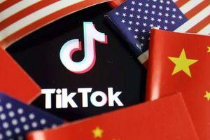Twitter muốn mua lại Tiktok tại Mỹ, để ngỏ khả năng hợp tác