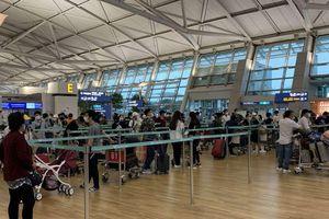 Ngày 9/8, sân bay Tân Sơn Nhất đón hơn 300 công dân Việt Nam từ Hàn Quốc trở về