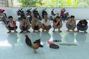 Bắt giữ 7 đối tượng đá gà ăn tiền, thu giữ gần 30 triệu đồng