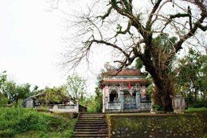 Làng cổ Phước Tích- nét đẹp nguyên sơ của làng quê Việt Nam