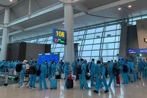 Đưa thêm 313 công dân Việt Nam từ Hàn Quốc về nước an toàn
