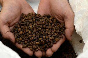 Giá cà phê rung lắc theo gói 1.000 tỷ USD của Mỹ