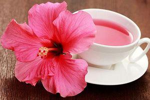 Tác dụng tuyệt vời của trà dâm bụt đối với sức khỏe