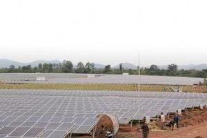 Tây Nguyên - 'Mỏ vàng' năng lượng tái tạo