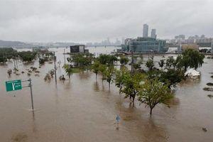 Mưa lũ gây thiệt hại nặng nề tại Hàn Quốc