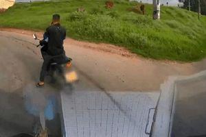 CLIP: Cuộc điện thoại ngang trái và người đàn ông 'dở chứng' khiến tài xế xe tải 'đau đầu'