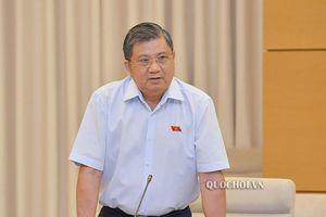 'Mức phạt môi giới nhập cảnh trái phép vào Việt Nam quá nhẹ'
