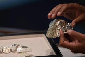 Choáng với khẩu trang 1,5 triệu USD, nạm 3.600 viên kim cương