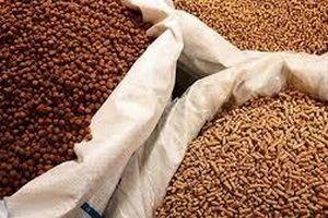 Kiểm tra thông tin báo nêu về quản lý nguyên liệu bổ sung thức ăn chăn nuôi