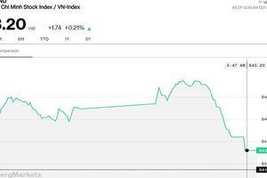 Chứng khoán 10/8: VN-Index suýt mất hết thành quả vì VCB, SAB