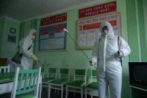 IFRC điều động tình nguyện viên hỗ trợ Triều Tiên chống dịch và lũ lụt