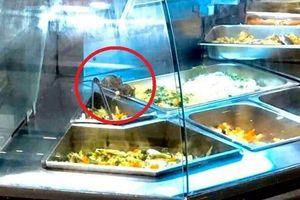 Aeon Mall nói gì về vụ chuột bò trên khay thức ăn khu ẩm thực?