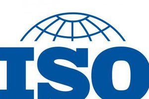 Tập huấn xây dựng, áp dụng duy trì hệ thống quản lý chất lượng TCVN ISO 9001:2015