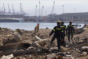 Vụ nổ ở Beirut: Liên hợp quốc kêu gọi quốc tế tiếp tục hỗ trợ Liban