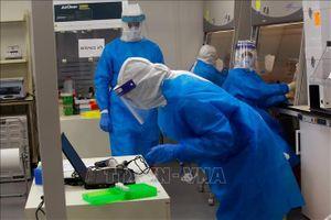 Israel: Vaccine phòng lao có thể hỗ trợ phòng bệnh COVID-19