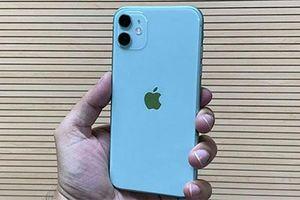iPhone 7, iPhone 8 Plus, iPhone XS Max, iPhone 11... giảm giá mạnh tại VN, khiến fan 'thèm khát'
