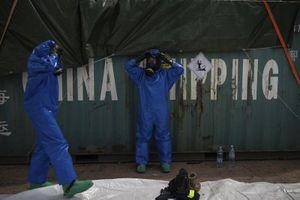 Phát hiện hơn 20 container hóa chất nguy hiểm ở cảng Beirut