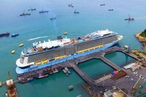 Cổ phiếu cảng biển tìm cơ hội trong thách thức