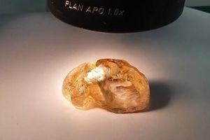 Nga phát hiện viên kim cương màu lớn nhất trong lịch sử