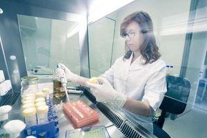 Thử nghiệm thuốc tẩy giun trong điều trị bệnh nhân Covid-19