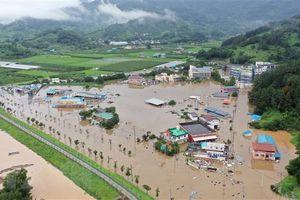 Hàn Quốc điều tra các dự án thoát nước sau đợt mưa lớn lịch sử