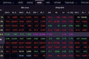 Cổ phiếu doanh nghiệp khử trùng tăng trần 11 phiên nhờ Covid