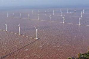 Điện gió lại tấp nập dự án ngàn tỷ