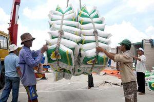 Giá lúa gạo xuất khẩu của Việt Nam cao hơn Thái Lan, Ấn Độ