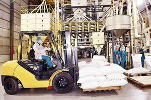 Doanh nghiệp nỗ lực duy trì sản xuất, kinh doanh