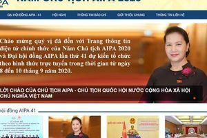 Công bố trang thông tin điện tử, bộ nhận diện AIPA 2020