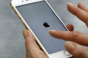 Mặc COVID-19, 'trùm' iPhone vẫn thắng lớn