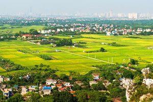 Hiệu quả từ công tác 'Dồn điền đổi thửa' tại xã Bình Dương, thị xã Đông Triều