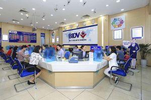 SSI: Lợi nhuận BIDV có dấu hiệu giảm trong các quý sắp tới