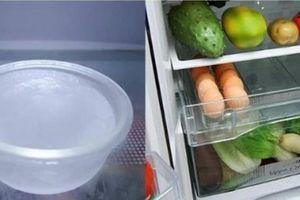 Đặt thứ này vào tủ lạnh, điều kỳ lạ xảy ra với hóa đơn tiền điện, khiến ai cũng mừng vui ra mặt