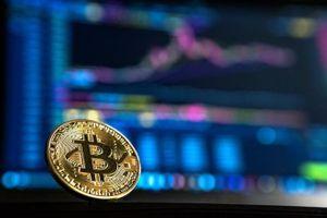 Giá Bitcoin hôm nay 14/8: Thị trường nổi sóng, Bitcoin nhảy múa trên 11.700 USD