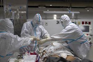 Thế giới ghi nhận trên 21,12 triệu ca mắc COVID-19, trên 758.300 ca tử vong
