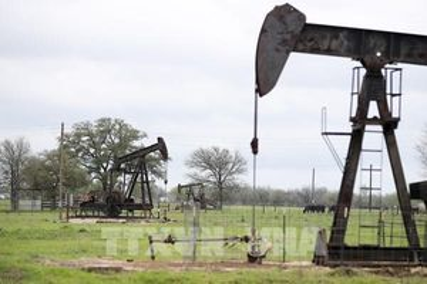 Giá dầu thế giới tiếp tục ghi nhận tuần đi lên