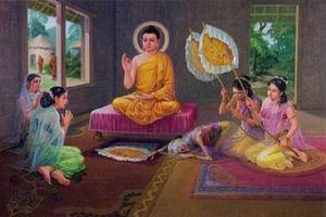 Phật dạy: Đời người có 4 thứ không tồn tại vĩnh cửu