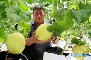 Nâng tầm nông sản Quảng Ngãi