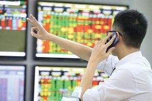 Chứng khoán ngày 17/8: Những cổ phiếu nào được khuyến nghị?
